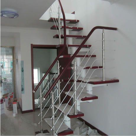 脊索梯种类